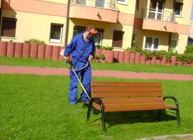 0/10829bea_zamiataniewspolnot6.jpg