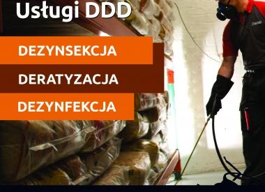 1/e107ae65_13_DDD_przod.jpg